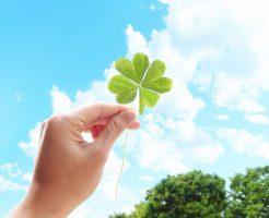 びわ灸の緑内障への施術事例