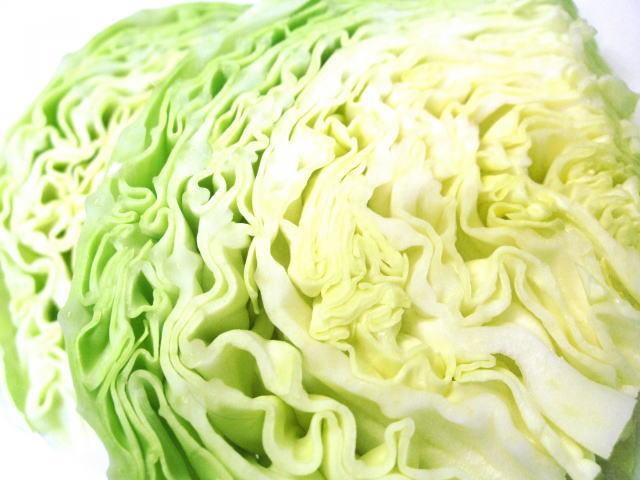 キャベツは最強の食べ物 特に春キャベツ
