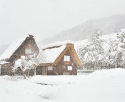 冬本番、全身が温まるびわ灸